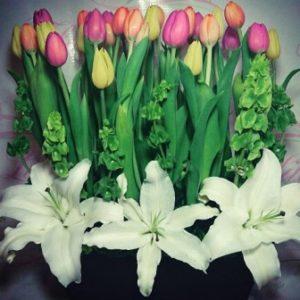 Flores a domicilio -Arreglo Floral con 30 Tulipanes y CasaBlancas 1