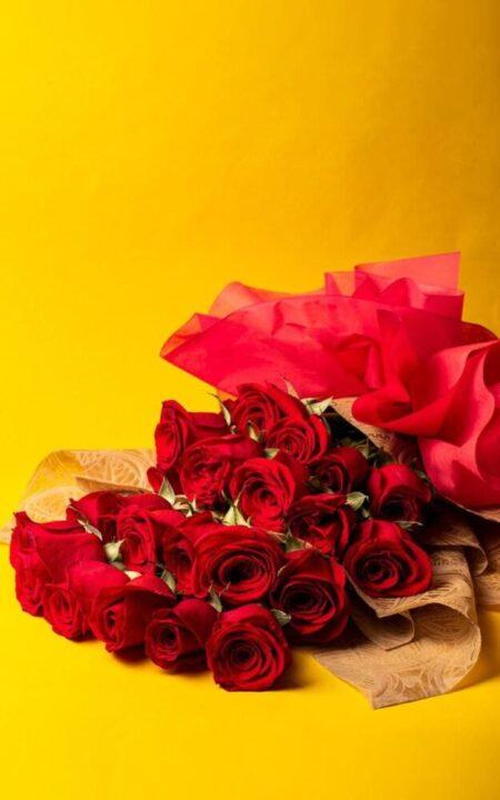 Enamorado Ando | Ramo con 24 Rosas Rojas