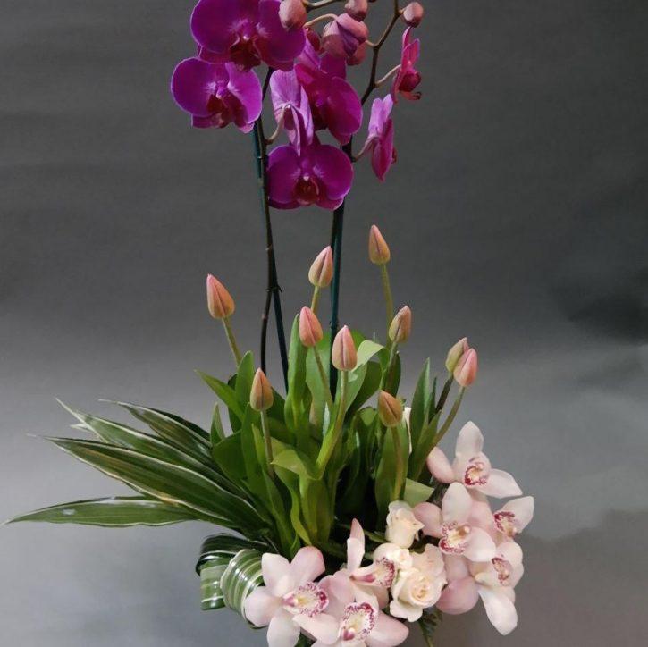 Arreglo con Orquideas, tulipanes y más orquídeas