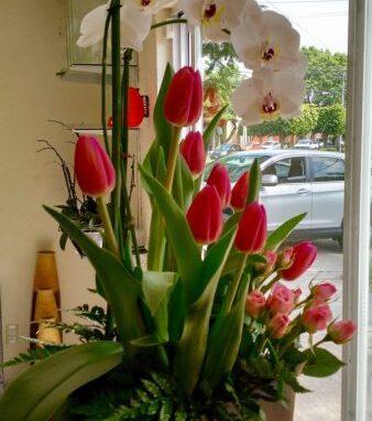 Arreglo Soñador con Mini Rosa, Orquídea y Tulipán