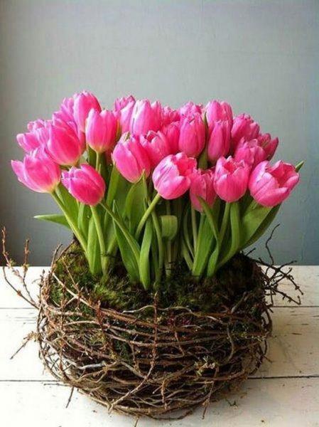Regalos 14 de febrero - Nido de tulipanes