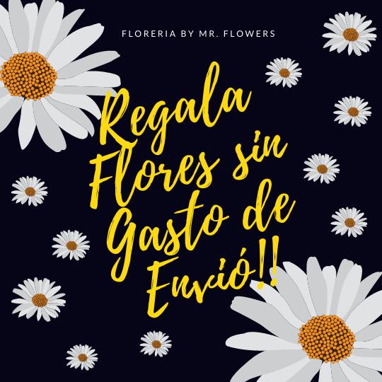 Regala Flores sin Gasto de Envío