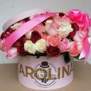 Caja de Rosas Carolina
