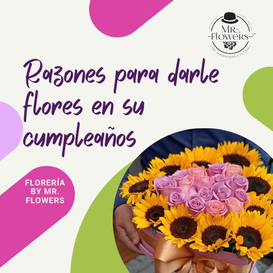 Razones para Darle Flores en su Cumpleaños